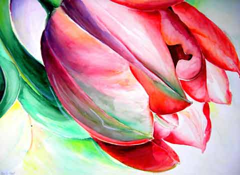 Tulpe, Aquarell (56x76cm)