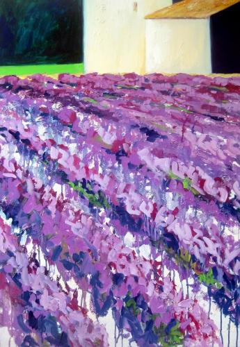 Lavendel-Felder in der Provence, Kasein-Tempera auf Leinwand (70x100cm)